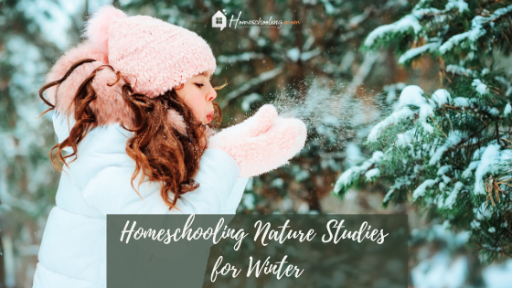 Homeschooling Nature Studies for Winter